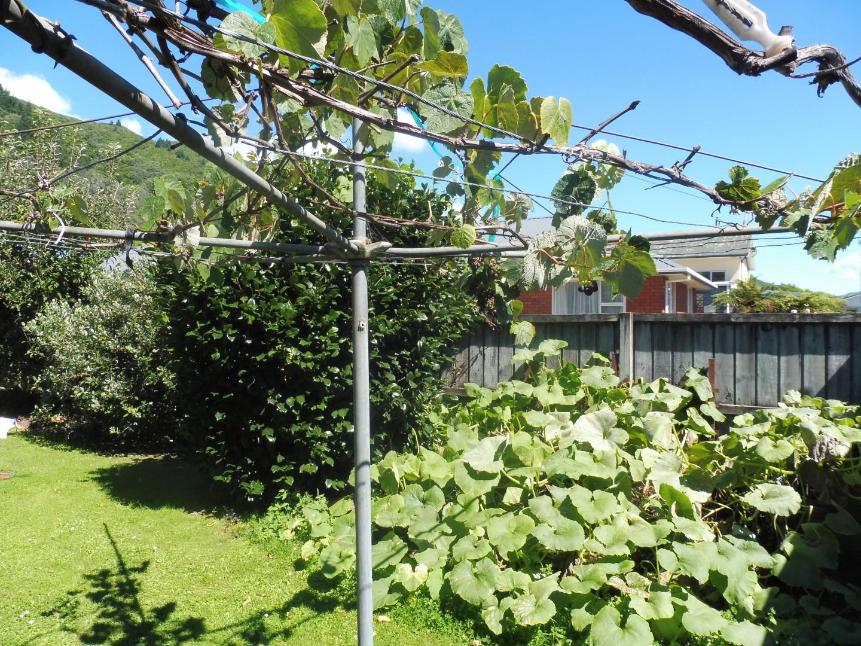 159a Waikawa Road, Picton #3 -- listing/9803/b.jpeg