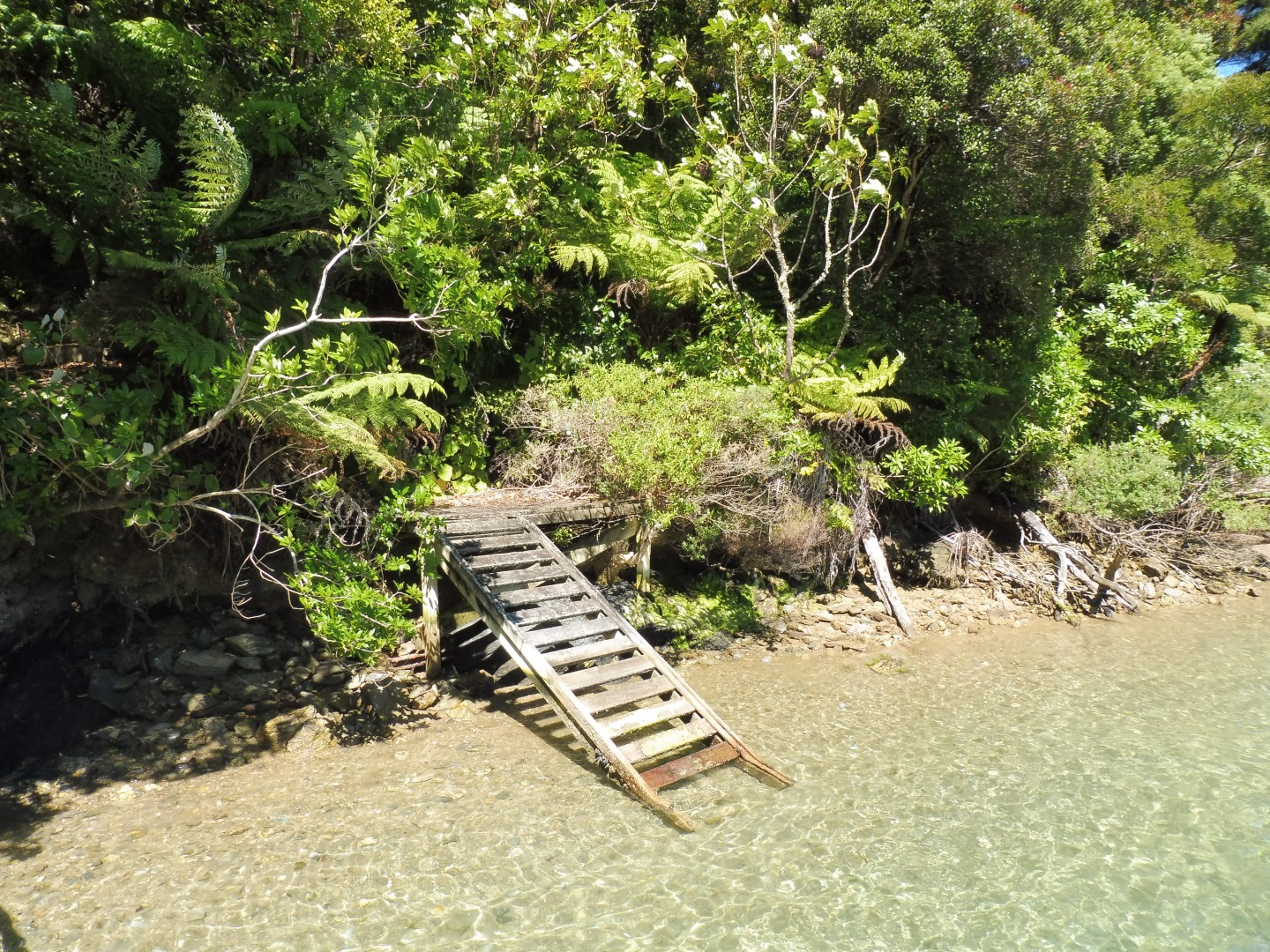 Lot 4 Double Cove, Queen Charlotte Sound #2 -- listing/9814/a.jpeg