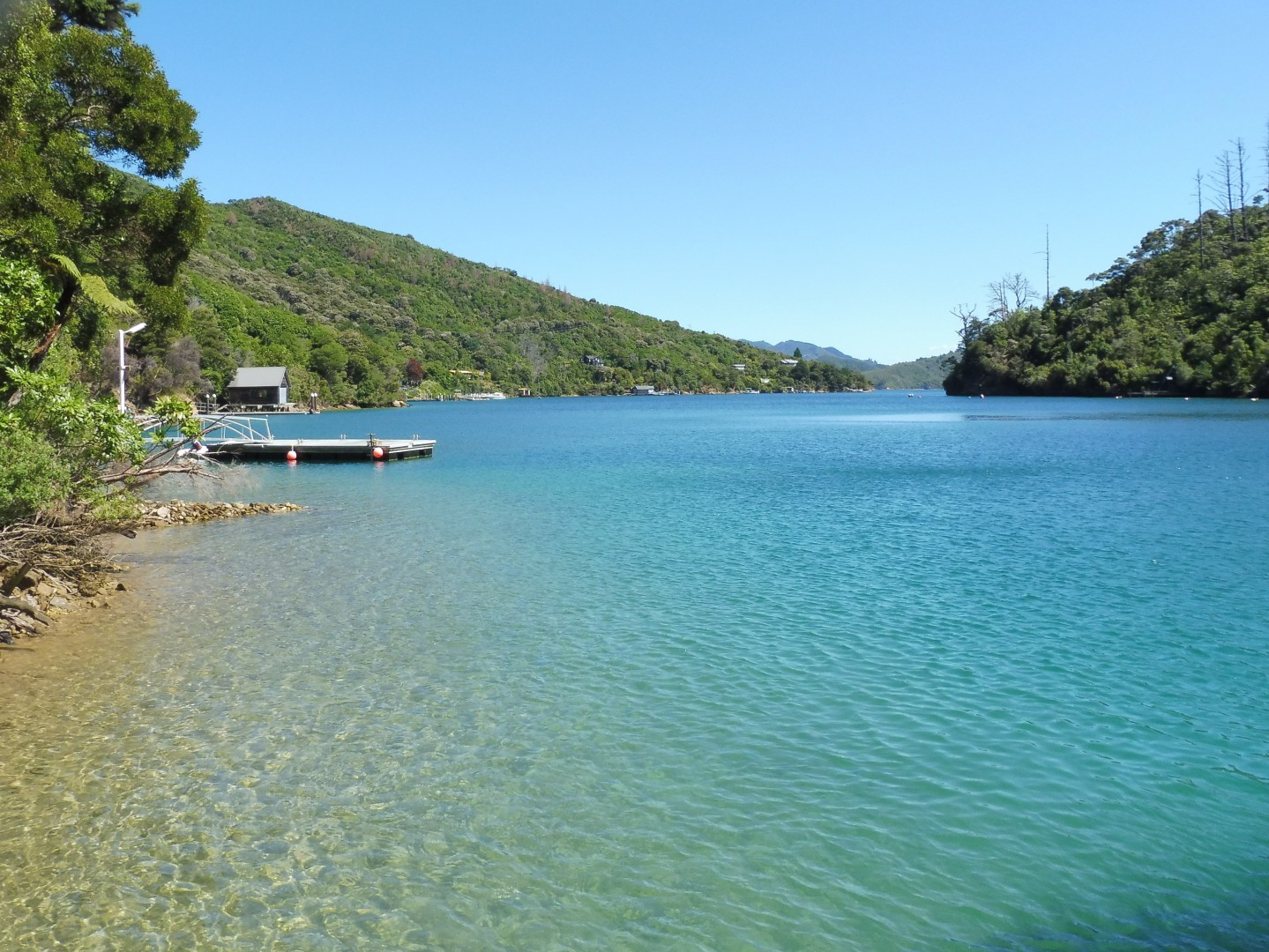 Lot 4 Double Cove, Queen Charlotte Sound #3 -- listing/9814/b.jpeg