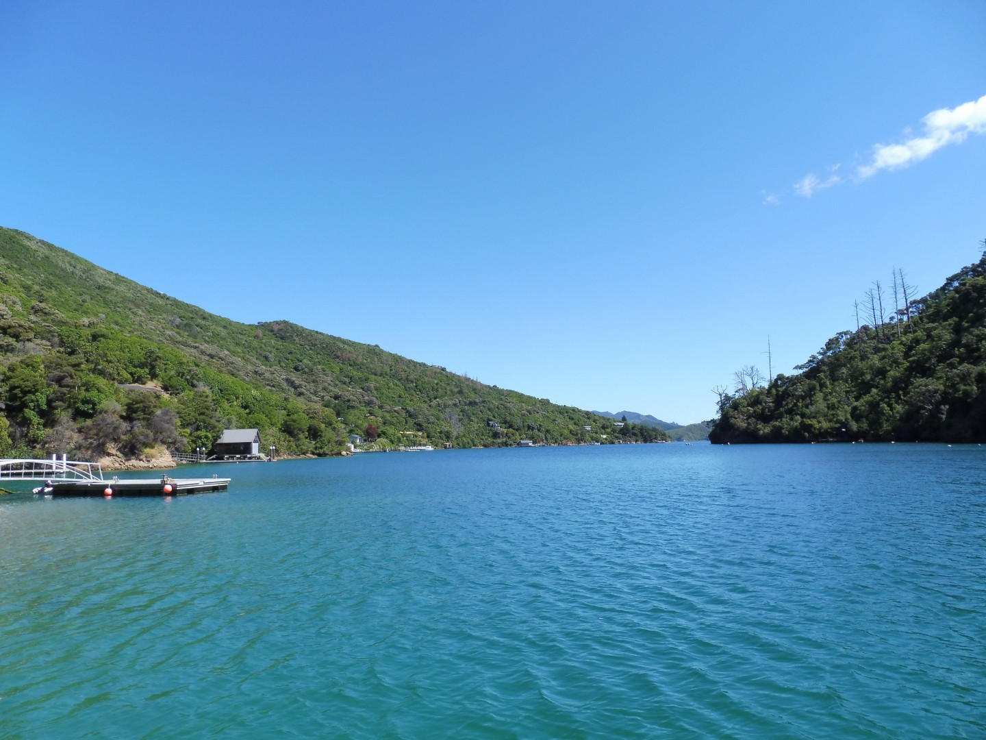 Lot 4 Double Cove, Queen Charlotte Sound #10 -- listing/9814/i.jpeg