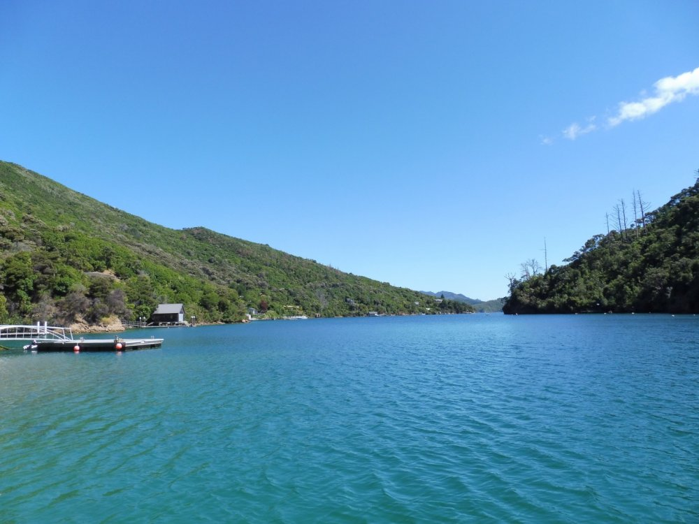 Lot 4 Double Cove, Queen Charlotte Sound #10