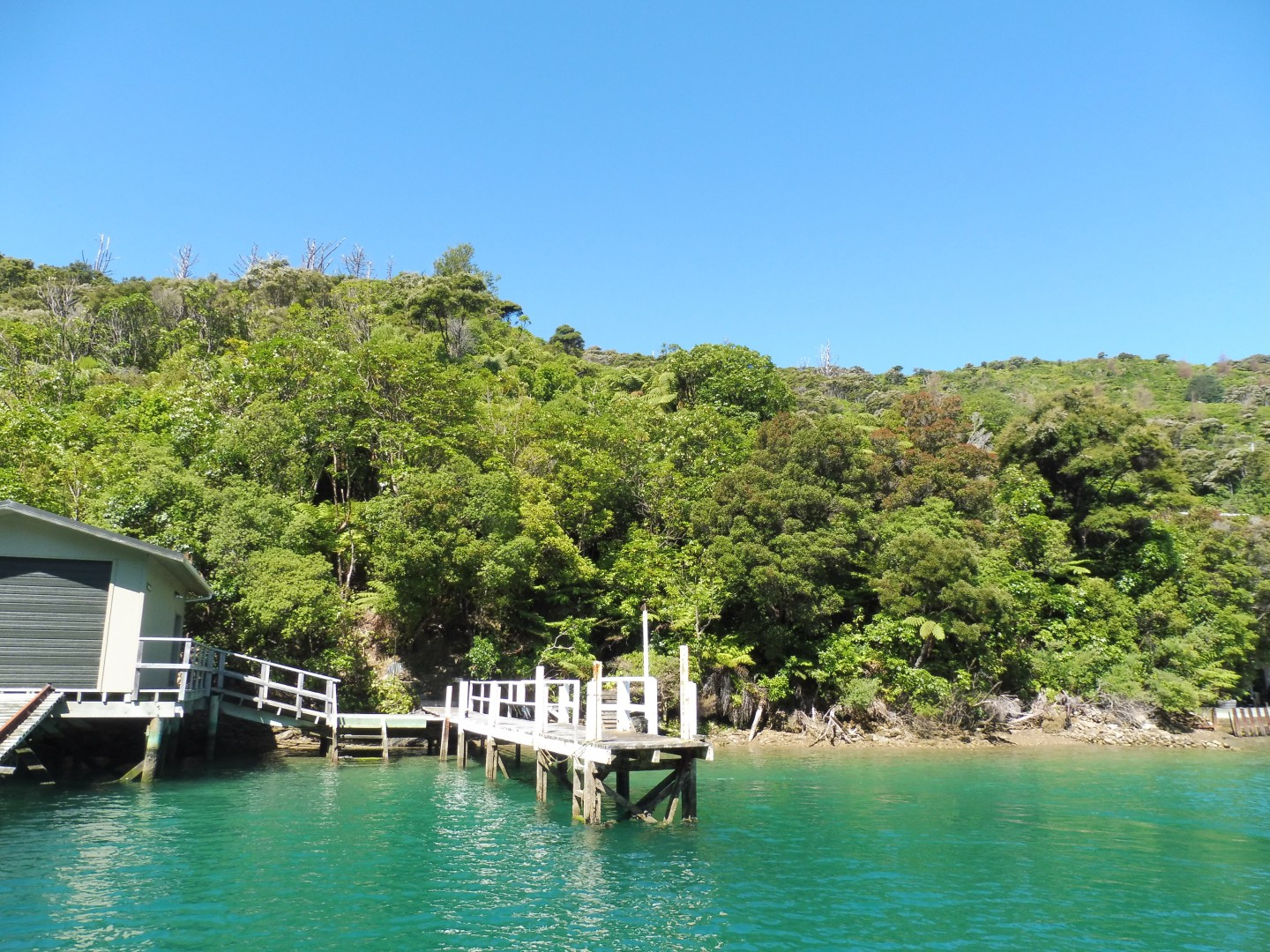 Lot 4 Double Cove, Queen Charlotte Sound #11 -- listing/9814/j.jpeg