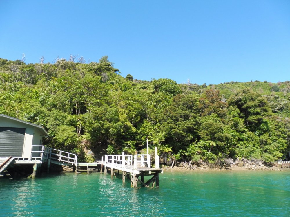 Lot 4 Double Cove, Queen Charlotte Sound #11