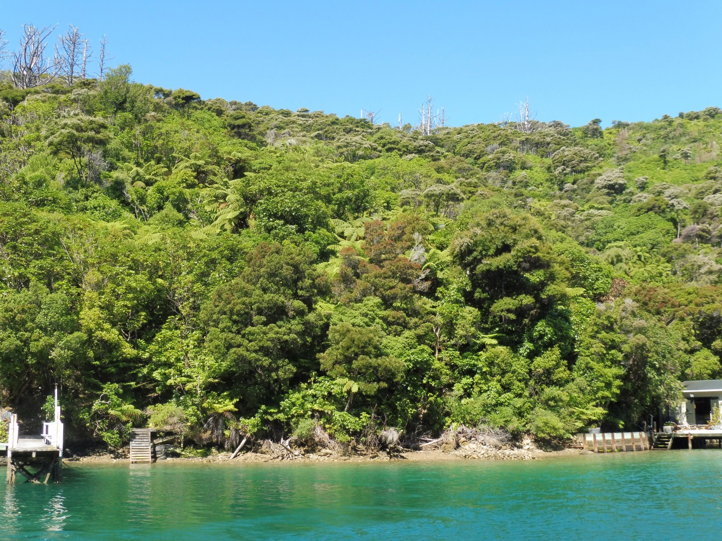Lot 4 Double Cove, Queen Charlotte Sound #12 -- listing/9814/k.jpeg